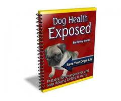 Dog Health Exposed/Perfect HandBook4 Dog Owners @