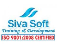 : ONLINE MS PROJECT TRAINING COURSE in Ameerpet, Hyderabad, India - SIVASOFT