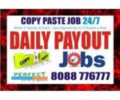 Tips to make Income | Data Entry | Daily Payout | 1141 |