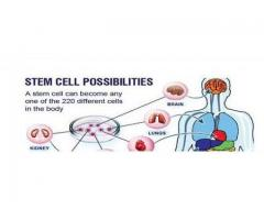 Find stem cell therapy & stem cell treatment in India