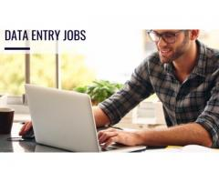 Data Entry & Research Project Assistant